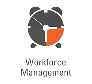 Synel workforce logoN