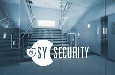 Synel Security