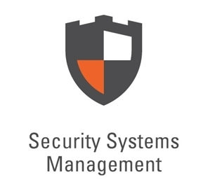 Synel security logo
